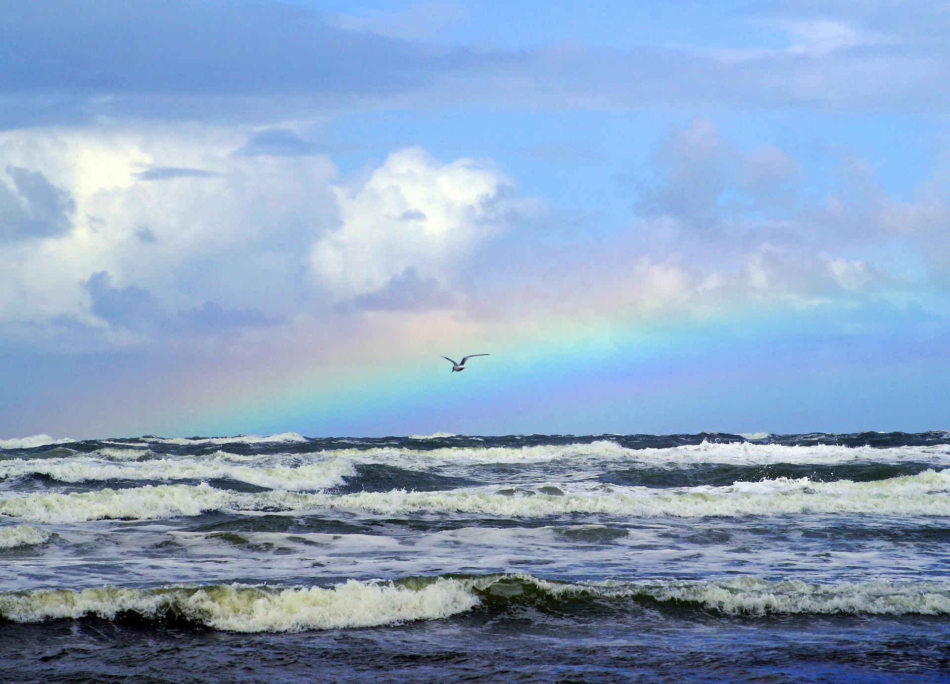 Ocean & Rainbow